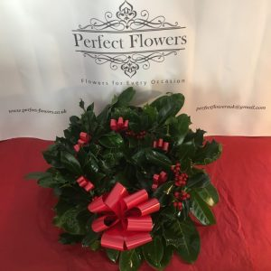 holly-wreath-with-waterproof-ribbon